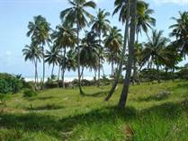 Lots and Land for Sale in Sabaneta De Yasica, Puerto Plata $4,050,000