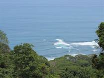 Farms and Acreages for Sale in Dominical, Puntarenas $2,120,000