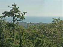 Lots and Land for Sale in Ojochal, Puntarenas $89,000