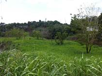 Lots and Land for Sale in Miradero, Mayaguez, Puerto Rico $275,000