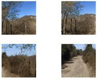 Lots and Land for Sale in EL CHILILLO, Mazatlan, Sinaloa $16,100,000
