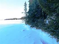 Lots and Land for Sale in Dryden, Ontario $94,900