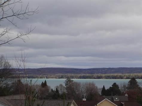 Torch Lake Views