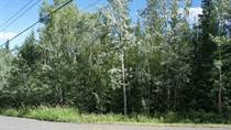 Lots and Land for Sale in 100 Mile House, British Columbia $48,800