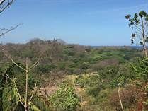 Lots and Land for Sale in Nosara, Guanacaste $3,000,000
