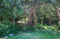 Lots and Land for Sale in Selvamar, Playa del Carmen, Quintana Roo $85,000
