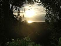 Lots and Land for Sale in Uvita, Puntarenas $500,000
