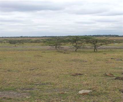 Isinya plots for sale in Kenya