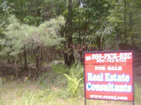 Pike County Real Estate : Single Story For Sale in Pocono