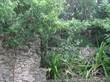 Lots and Land for Sale in Doctores, Cancun, Quintana Roo $125,000