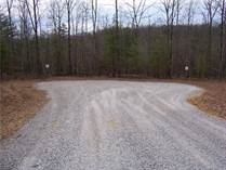 Homes for Sale in Spruce Creek, Jamestown, Tennessee $60,000