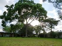Homes for Sale in Lourdes De Montes De Oca, San José $1,100,000