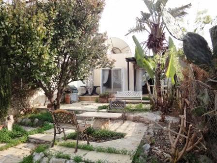 1-Chloraka-Bungalow-Paphos-Cyprus