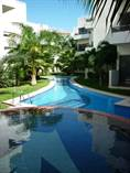 Condos for Rent/Lease in Playacar Phase 2, Playa del Carmen, Quintana Roo $250 daily