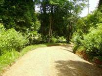 Lots and Land for Sale in Dominical, Puntarenas $59,900