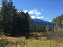 Lots and Land for Sale in Valemount, British Columbia $450,000