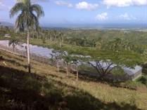 Farms and Acreages for Sale in Carretera Turistica - Tubagua, Puerto Plata $439,900