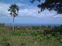 Lots and Land for Sale in Cabrera, Maria Trinidad Sanchez $28