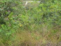 Lots and Land for Sale in Playa Hermosa, Jacó, Puntarenas $200,000