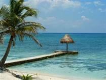 Homes for Sale in Puerto Aventuras, Playa del Carmen, Quintana Roo $1,800,000