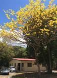 Homes for Sale in Dolega, Chiriqui, Chiriquí  $110,000