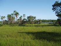 Lots and Land for Sale in Placencia, Westen Lagoon, Belize $200,000