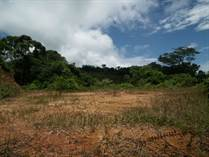 Lots and Land for Sale in Platanillo, Puntarenas $49,000