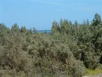 Lots and Land for Sale in Rancho Leonero, Buena Vista, Baja California Sur $30,000