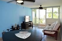Condos for Sale in Haudimar Beach Resort, Isabela, Puerto Rico $180,000