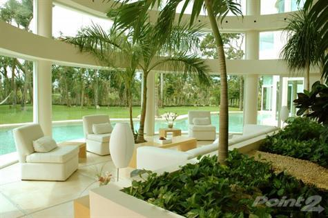 Search for your dream home in Paradise!