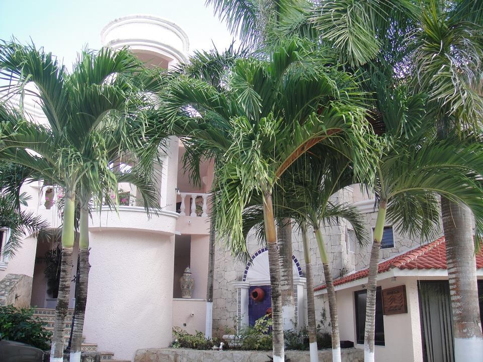 Akumal Real Estate by Akumal Investments