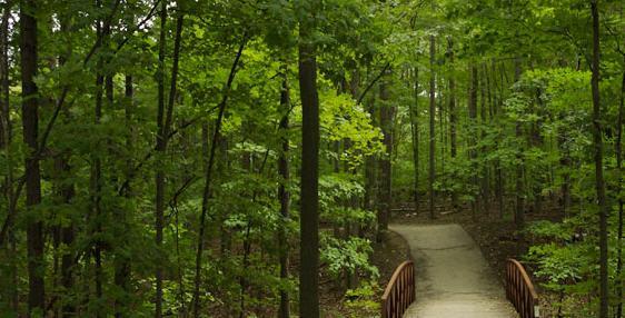 Oakville Trails