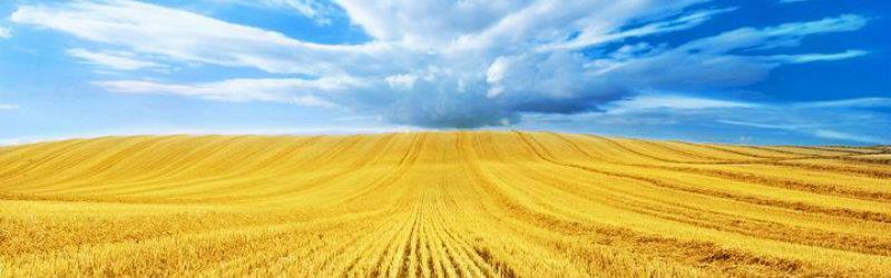 Saskatchewan Farms Ranch Listings - Justin Yin