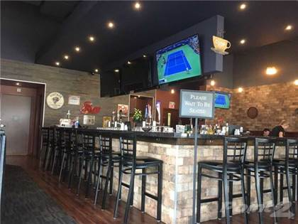 Commercial for Sale West Of Toronto Area, Bar And Grill Restaurant Toronto Ontario $199,000