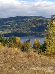 Land  in Lot 12, Squilax-anglemont, Chase, British Columbia, V0E-1M8