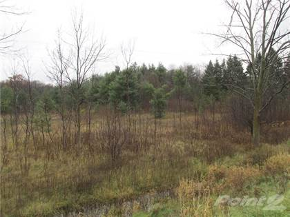 Land for Sale Lot 15 #8 Highway, Flamborough, ON
