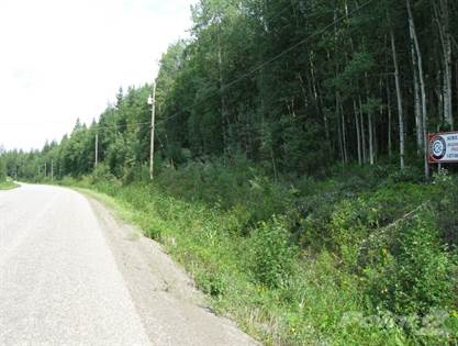 Land for Sale Mountainview Road - 21 Acres, Mcbride, BC