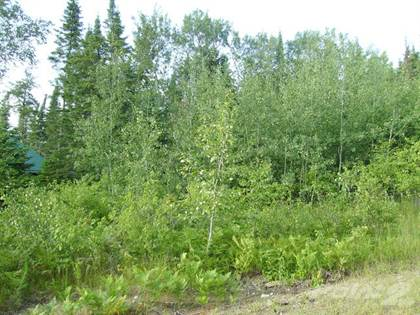 Land for Sale  in 4 Evergreen Rd, Victoria Beach Non Restricted Area Special Offer!, Victoria Beach, Manitoba, R0E2C0