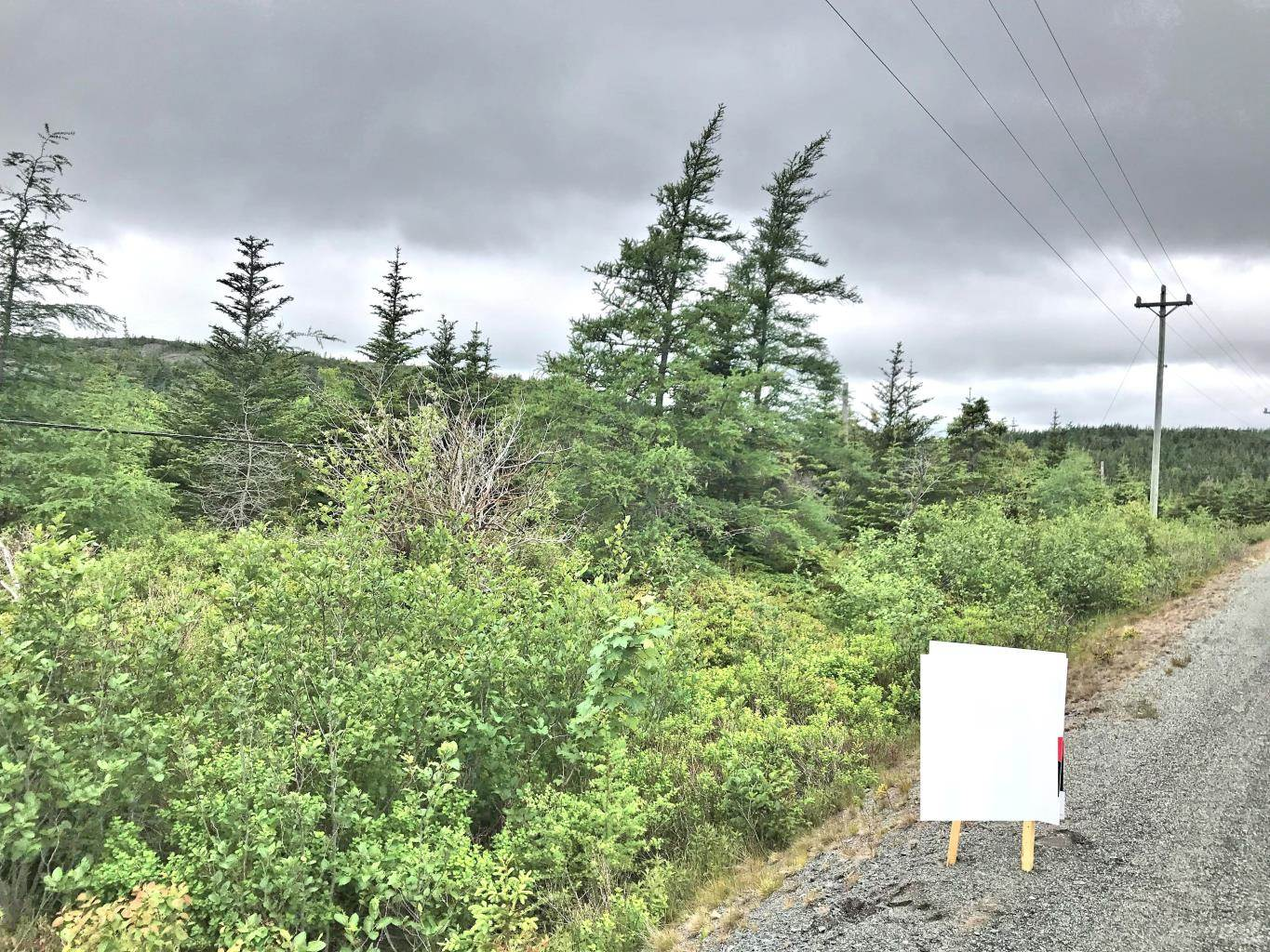 Roaches Line, South River, Newfoundland, A0A1G0