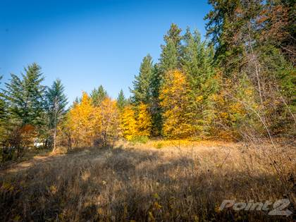 Land for Sale  in 210 11th Street Se, Salmon Arm, Salmon Arm, British Columbia, V1E-4J7