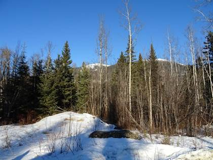 Land for Sale  in Lot 6 Airport Rd, Mcbride, British Columbia, V0J2E0
