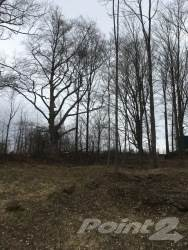 Lot 5 Butternut Court Grey Highlands N0c 1h0, Markdale, Ontario,