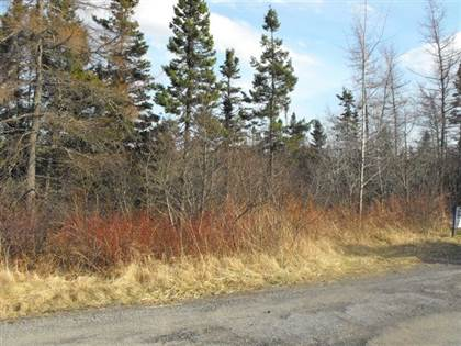 Land for Sale 4 Harbourview Cres, Louisdale, NS