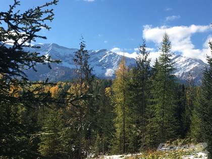 Land for Sale  in Proposed Lot 6 Mammoth Dr, Fernie, British Columbia, V0B1M1