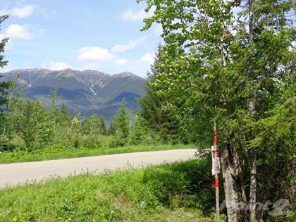 Land for Sale Lot 2 Lamming Pit Road, Mcbride, BC