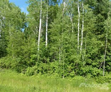 Land for Sale 6 Augusta Way, Traverse Bay, MB