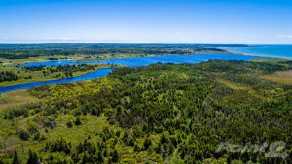 Land for Sale Dargie Cove Road, Beaver River, NS