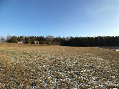 Land for Sale  in Pt Lt 3 Forestell Road, Puslinch, Ontario, N1H6J3