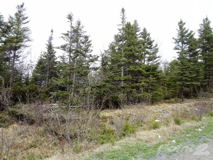 Lot 6 Hodewater Line South River Newfoundland $18,900