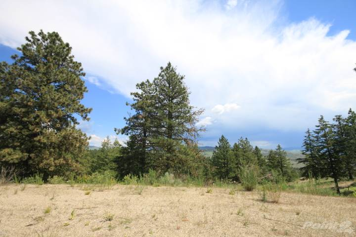 Lot 5 Caribou Way, Osoyoos Vacant Land For Sale